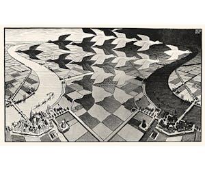 Escher NYC