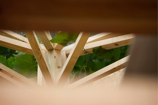 TREE|HUB by Werk Studio. Photo: Belen Palacios.