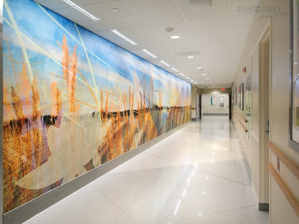 Riley Hospital for Children Wall Murals Interior Photography ©Josh Humble