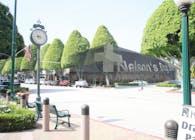 Nelson's Drug Store