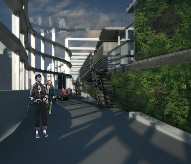 Green Corridor Circulation
