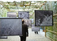 Vegetation as a Political Agent - exhibition at PAV (Torino - Italy)