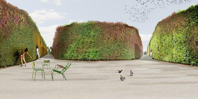 Rendering of the winning Star Maze design for Park Groot Vijversburg by LOLA, Deltavormgroep, and Piet Oudolf (Image: LOLA)