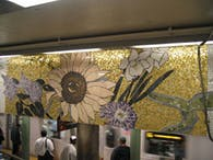 77th & 86th Subway Stations