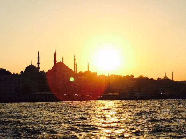 Turkey (Photo: Ken Koense).