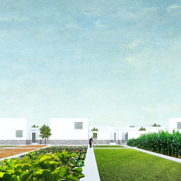 Landscape and Dwelling: Each household governs their own plot of land, and has the freedom to utilize it for agricultural production, flower gardens, or leisure patio space. This strip of land is 180 square meters (5m x 36m) and is bound by public sidewalks and passages.