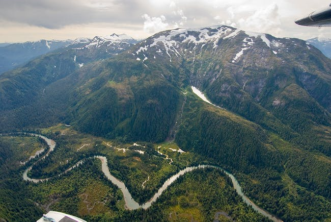 Great Bear Rainforest. Photo: Andrew Wright.