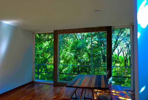 Living and Dining room view (framing the nature)