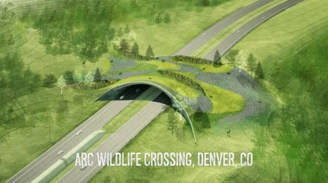 Arc Wildlife Crossing. Screenshot from Balmori.com