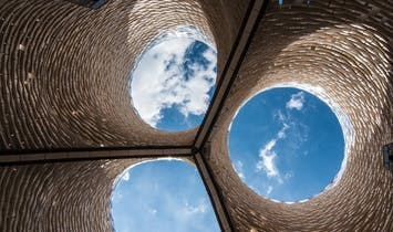 "Interview with David Benjamin, creator of MoMA PS1's ""Hy-Fi"" Mushroom Tower"