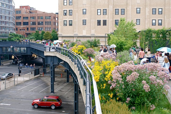 The High Line in midsummer. Image via nyclovesnyc.blogspot.com.