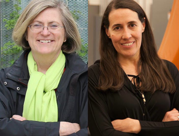 The curators of 'The Architectural Imagination': (left) Cynthia Davidson and (right) Monica Ponce de Leon. Image credit: 'The Architectural Imagination'.