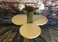 Pure White Tri-Circle Coffee table