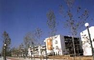 Main Green Zone – Olympic Village