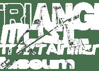 Bullfinch Triangle Music Entertainment Museum