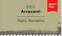 Screen/Print #64: Pedro Bandeira Narrates His Field Trip to Arcosanti