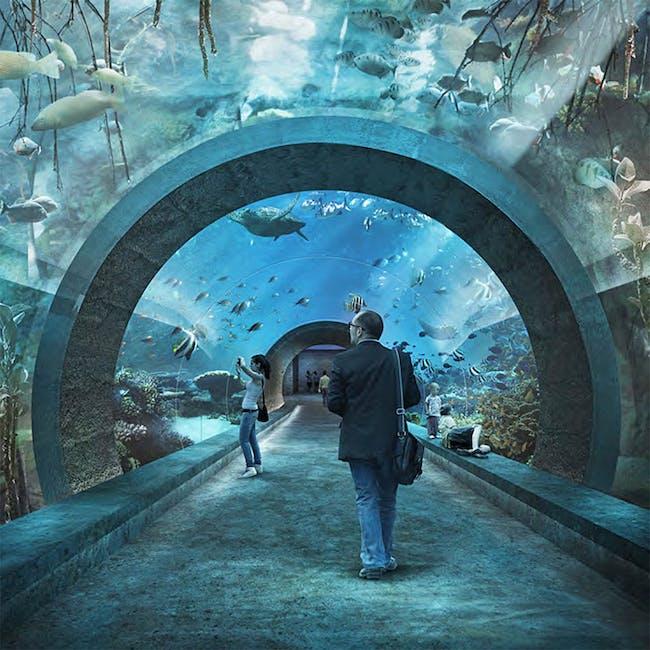 1. Place: Seacliff by Boltshauser Architekten