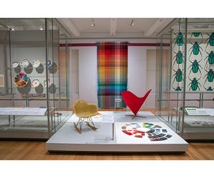 Saturated: The Allure and Science of Color