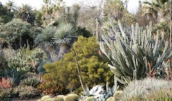 What would happen if LA replaced all its lawns with drought-tolerant landscaping?