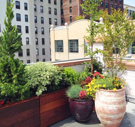 Brooklyn Nyc Backyard Patio And Rooftop Terrace Garden