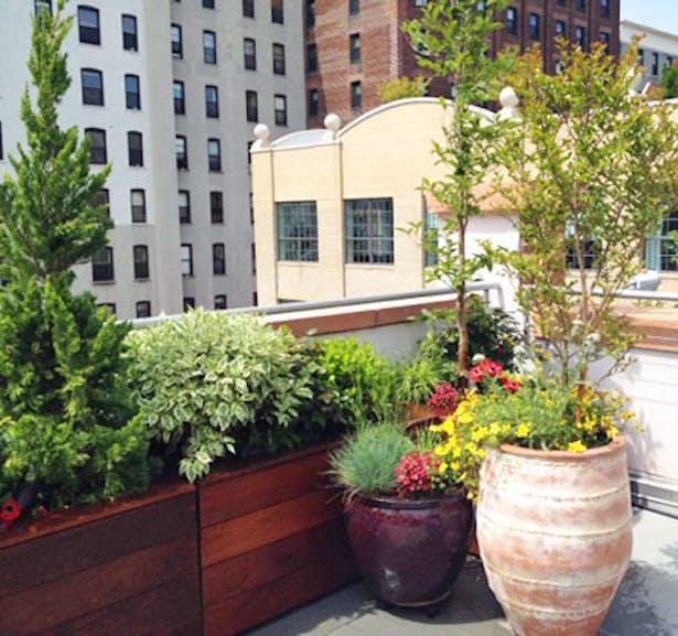 Roof Terrace Garden Design: Brooklyn, NYC Backyard Patio And Rooftop Terrace Garden