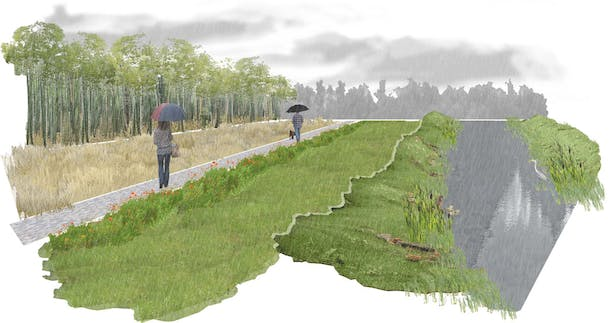 Tributary Perspective - Pedestrian Path and Created Wetland
