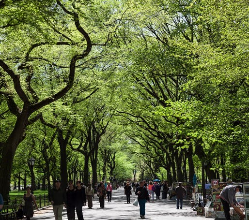 Central Park in the springtime. Photo: Rick Harris/Flickr.