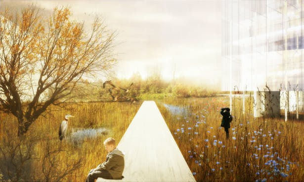 wetland park.