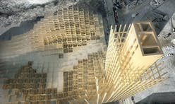 Researchers discover 'glue' that makes plant cell walls strong — foreseeing brighter future for wooden skyscrapers