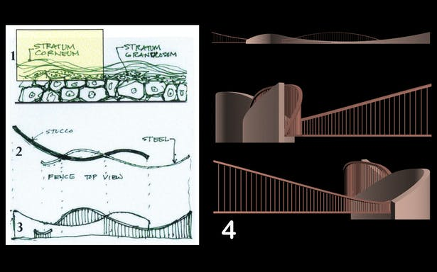 Since the first order of protection to a property is the fence that borders the building. The association become the exterior epidermis layer called Stratum Corneum (1) appears to be overlapping sinusoidal waves where the inspiration is drawn and borrowed that transforms into (2). Applying projection line at the intersections, the Elevation (3) mimics the top view so it's an echo from another point of view. Finally a 3D Rendering (4).