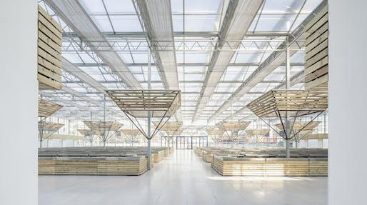 LUO Studio, Beijing, China