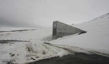 Global warming has caused meltwater to penetrate the Global Seed Vault in the Arctic