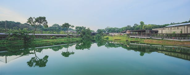 Sited along Upper Seletar Reservoir, the setting of River Safari is an attraction unto itself