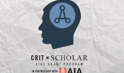 AIAS selects students to participate in CRIT Scholar fellowship program