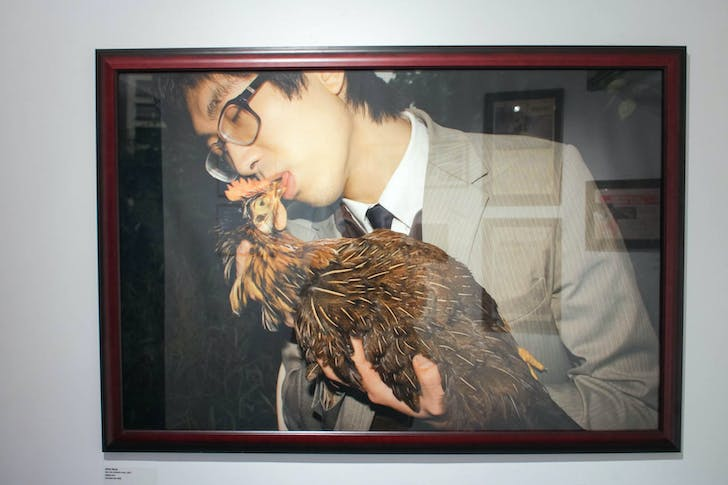 Adrian Wong - 'Sak Gai (Chicken Kiss)' (at Para-Site Exhibit)
