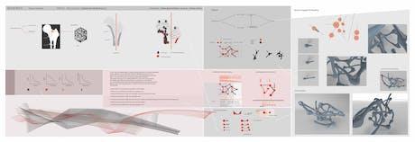 MidTerm-Digitally Generated Morphology