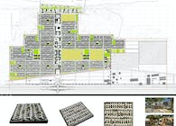 MASTERPLAN FOR 1200 AFFORDABLE HOUSES WITH FACIELITIES, AL AQAYLAH, LIBYA