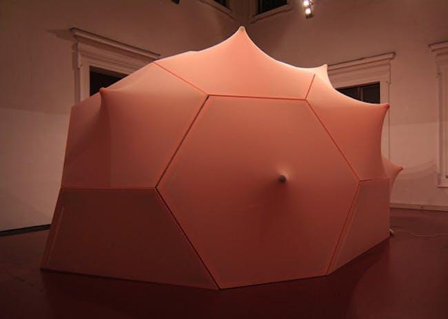 Cerebral Hut (exterior) installation by Guvenc Ozel in collaboration with Alexander Karaivanov, Jona Hoier and Peter Innerhofer (Photo- Bengt Stiller)
