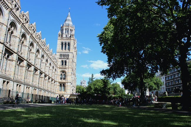The Natural History Museum grounds in London. Image courtesy of Natural History Museum Civic Realm.