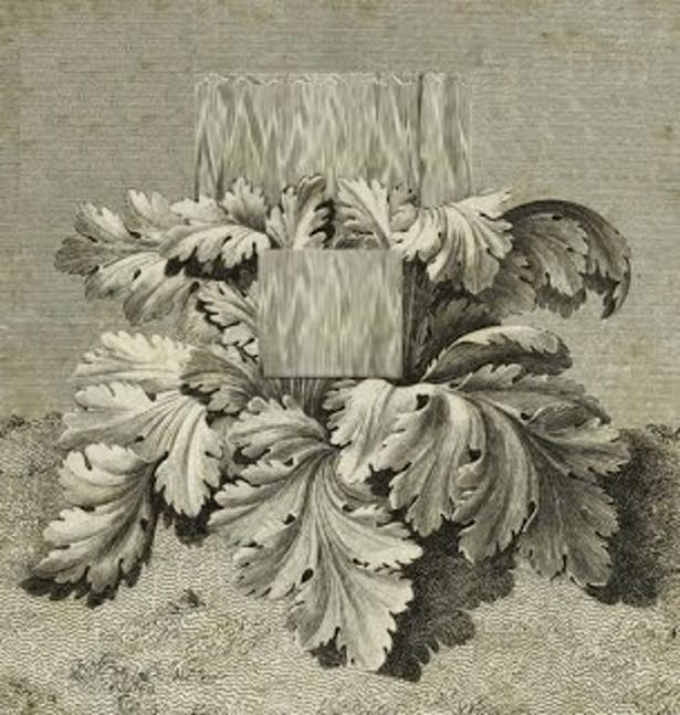 Corinthian Capital + Giovanni Anselmo - Untitled (sculpture eating lettuce) >>>here 1 acanthus -oooops!- 1 lettuce is crushed between 2 blocks of granite >>> Contemporary Corinthian Order