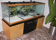 200 Gallon Fish tank Stand