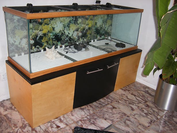 200 Gallon Fish Tank Stand Roy Senior Archinect