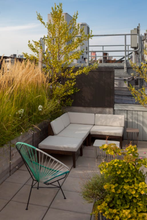 Staghorn NYC Rooftop Landscape Design