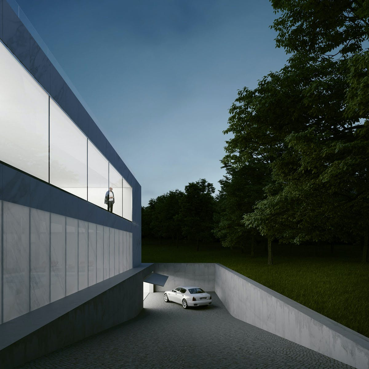 Entrance To The Garage